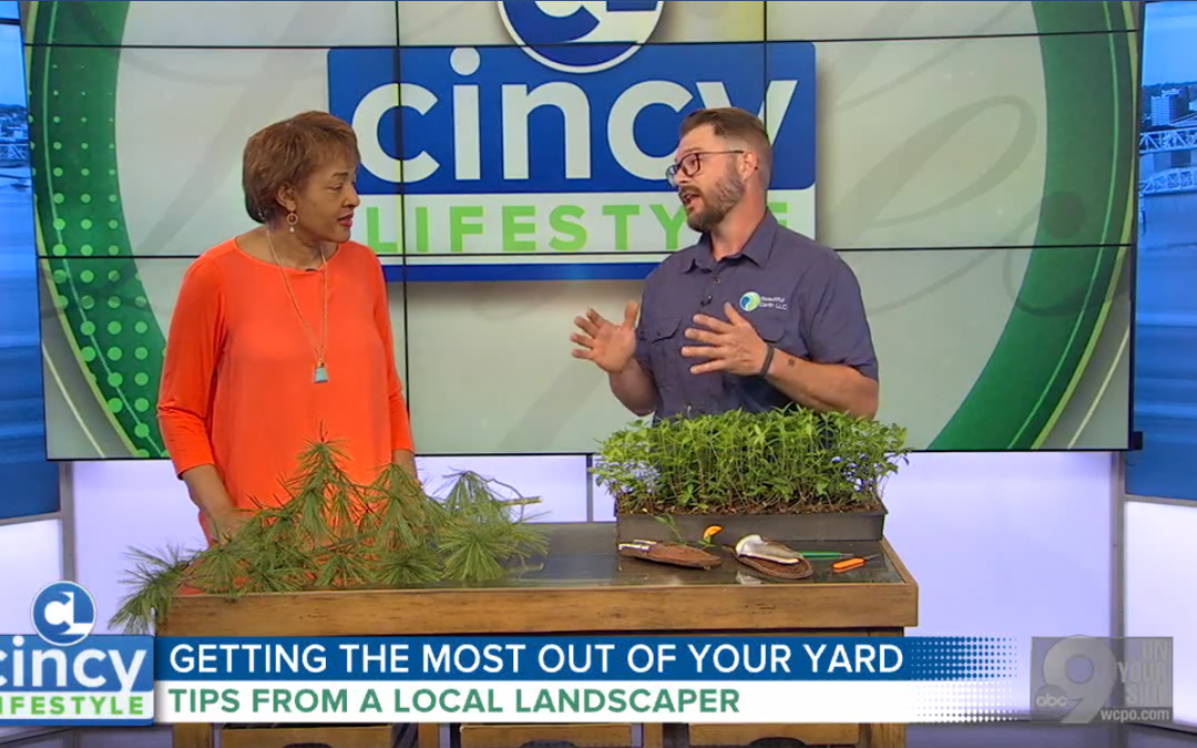 Spring Gardening Tips as Featured on WCPO